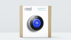Nest in_the_box-6e90152e